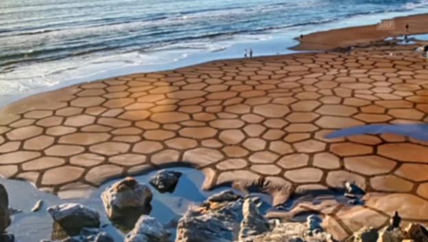 Video «Der Sandkünstler von San Francisco» abspielen