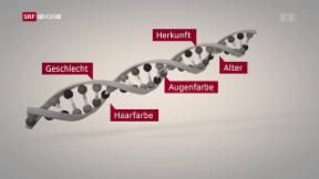 Video «FOKUS: Wenn die DNA zum Täter führt» abspielen
