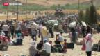 Video «Flüchtlingswelle aus Syrien in den Irak» abspielen
