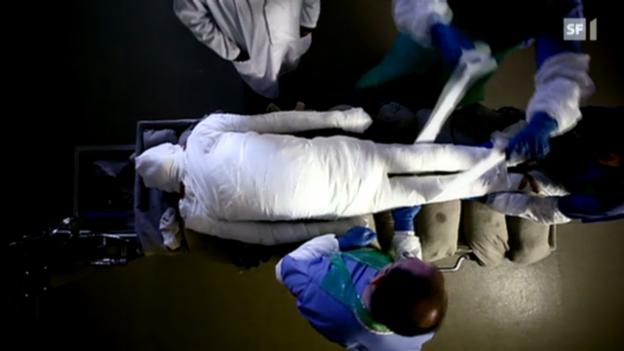 Video ««Einstein» vom 8. März 2012» abspielen