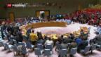 Video «Keine Waffenruhe in Syrien trotz Uno-Resolution» abspielen