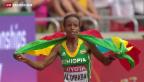 Video «Letzter Tag an der Leichtathletik- WM» abspielen