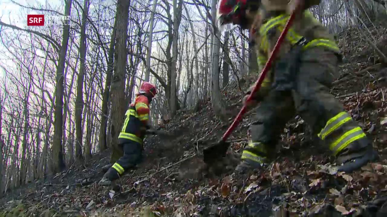Brandbekämpfung im Steilhang