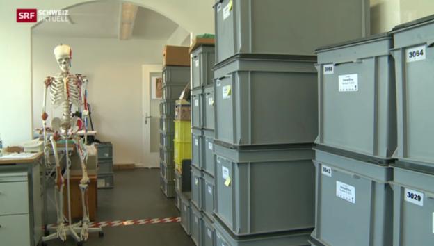 Video «Gesucht: Neues Zuhause für tausende von Skeletten» abspielen