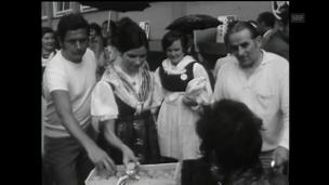 Video «Walliser Aprikosen in Basel (1971)» abspielen