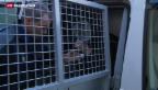 Video «Pädophilie-Fall von Sirnach: hohe Gefängnisstrafe für den Täter» abspielen