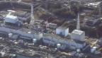 Video «Zeitbombe Fukushima» abspielen