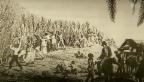 Video ««ECO kompakt»: Sklaverei» abspielen