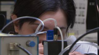 Video «Schweizer Firmen in chinesischer Umarmung» abspielen