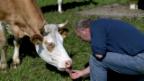 Video «Der mit den Kühen tanzt» abspielen