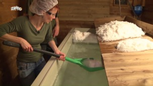 Video «Woher kommt unser Salz?» abspielen