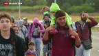 Video «Mehr Flüchtlinge kommen über Balkanroute in die Schweiz» abspielen