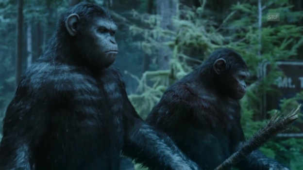 Video ««Dawn of the Planet of the Apes»» abspielen
