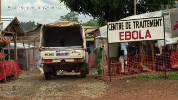 Video «Ebola - Suche nach Heilung» abspielen