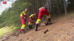 Video «Feuerwehr kontrolliert öffentliche Feuerstellen» abspielen