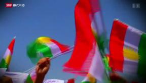 Video «Umstrittene Waffenlieferungen an Kurden-Kämpfer» abspielen