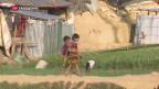 Video «Schweizer Millionen für Rohingya» abspielen