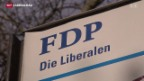 Video «Zwei Sitze für die FDP» abspielen