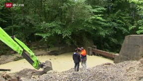 Video «Taugen Hochwasserschutzmassnahmen tatsächlich?» abspielen