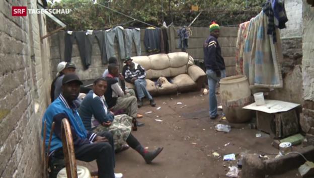 Video «Zulu-König weist Verantwortung von sich» abspielen