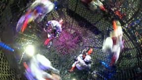 Video «Weltrekord-Versuch: Freddy Nock in der Todeskugel» abspielen