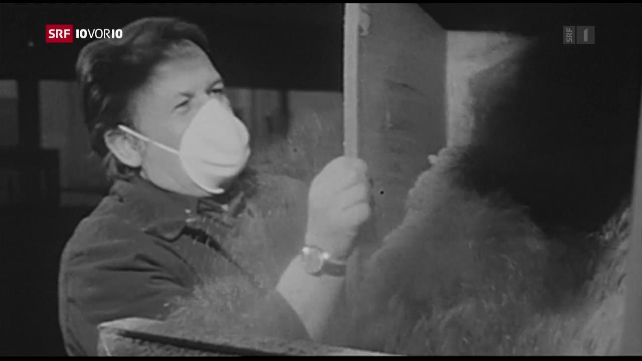 Asbest-Gefahr bei Entsorgung