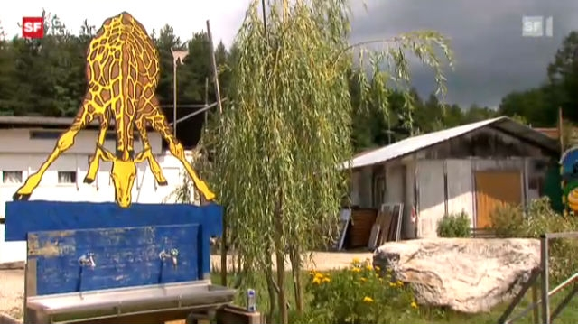 Zaffaraya: Alternative Wohnsiedlung in Bern
