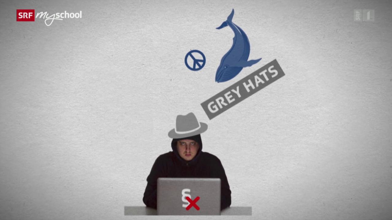 Hacker: Die Guten und die Bösen