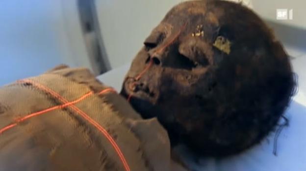Video «Was Mediziner von Mumien lernen» abspielen