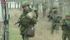 Video «Lage auf der Krim spitzt sich zu» abspielen