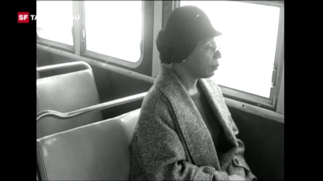 Geschichte der Rassentrennung