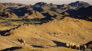 Link öffnet eine Lightbox. Video Geheimnisse Asiens – Mongolei: Weite, Wüste, Wildnis abspielen.