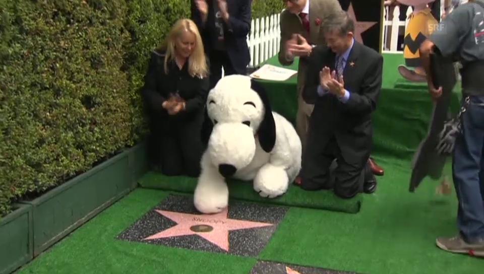 Snoopy auf dem «Walk of Fame»