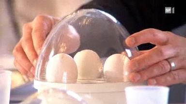 Eierkocher im Test: Viele nicht das Gelbe vom Ei