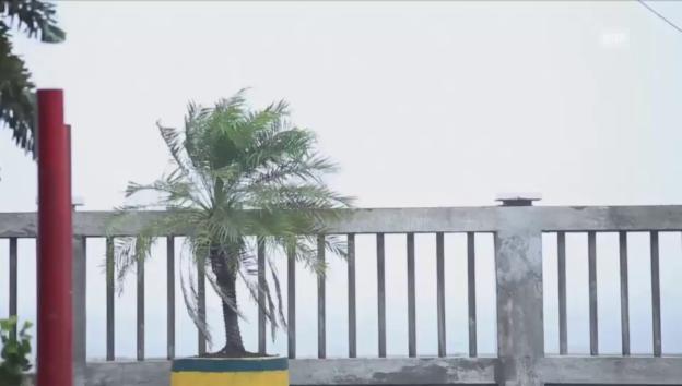 Video «Taifun auf den Philippinen» abspielen