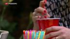 Video «EU-Parlament für Plastik-Verbot» abspielen