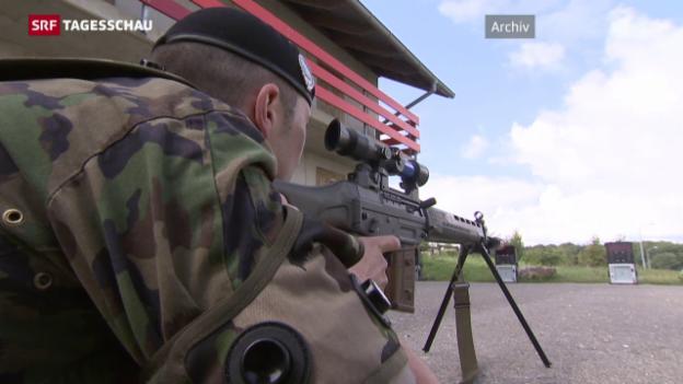 Video «Verschärfung des Waffenrechts» abspielen