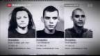 Video «Plädoyers NSU-Prozesse» abspielen
