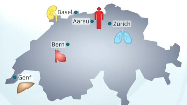 Der weite Weg der Organe