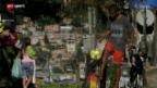 Video «Favelas: Die Brutstätte der zukünftigen Stars» abspielen