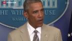 Video «Obama hat noch keine Strategie» abspielen
