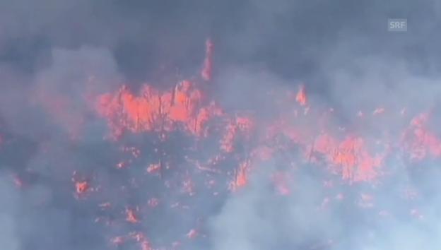 Video «Verheerendes Buschfeuer in Australien (unkomm.)» abspielen