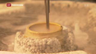 Video «Auszeichnung für neue Mikoskopie-Technik» abspielen