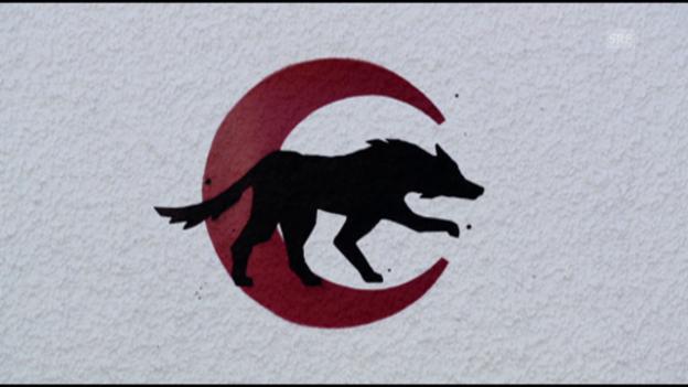 Video ««Wölfe in B.»» abspielen