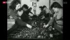 Video «Die heilige Barbara» abspielen