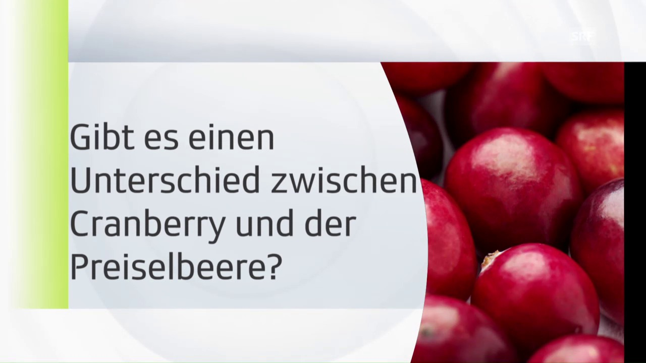 Cranberry = Preiselbeere?