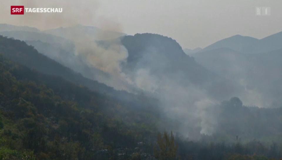 Waldbrände wüten auf dem Balkan