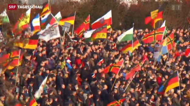 Video «Pegida-Demonstrationen europaweit» abspielen