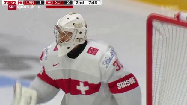 Video «Eishockey: Van Pottelberghe zum HCD» abspielen