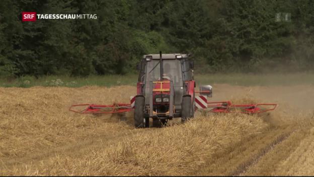 Video «Bauern werden geschont» abspielen